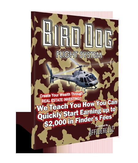 Bird Dog Flight System